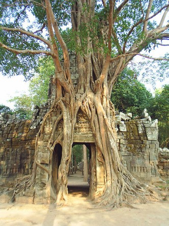 Ta Som Khmer Temple at Angkor