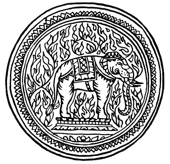 Womens-Wiles-elephant